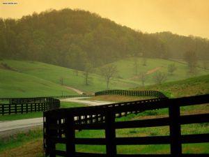 Peaceful_Countryside